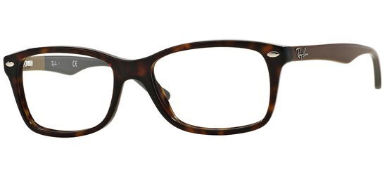 Ray-Ban RX5228-5545 Ecaille